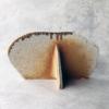 paul-scott-ceramics-contemporary-galerie-h-carouge-geneva
